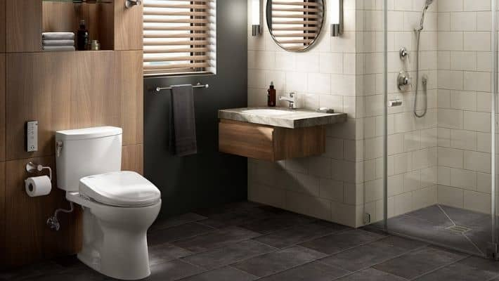 Best Toilet For Heavy Person
